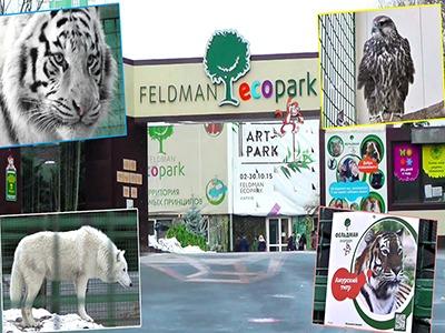 Картинки по запросу парк фельдмана фото