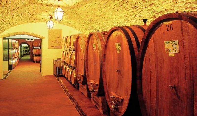Поездки в Коблево. Вино местного производства. Компания Днепр-Море.