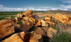 Экскурсия Каменная могила с. Терпенье из Днепра. Компания Днепр-Море