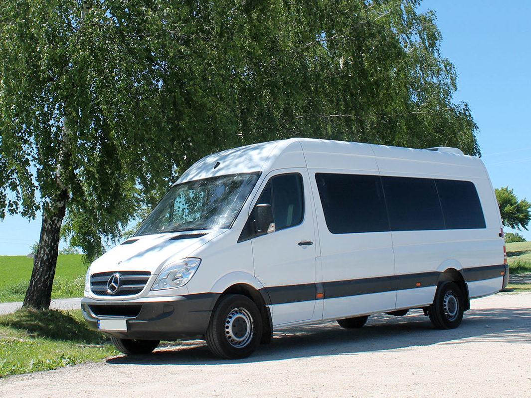 Заказать микроавтобус Mercedes-Benz Extra-Long 313 (белый). Компания Днепр-Море.