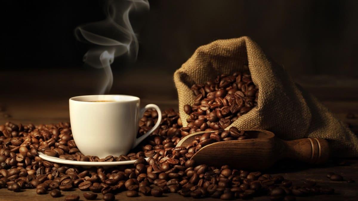 Музей кофе CoffeeMall. Экскурсия с Днепр-Море