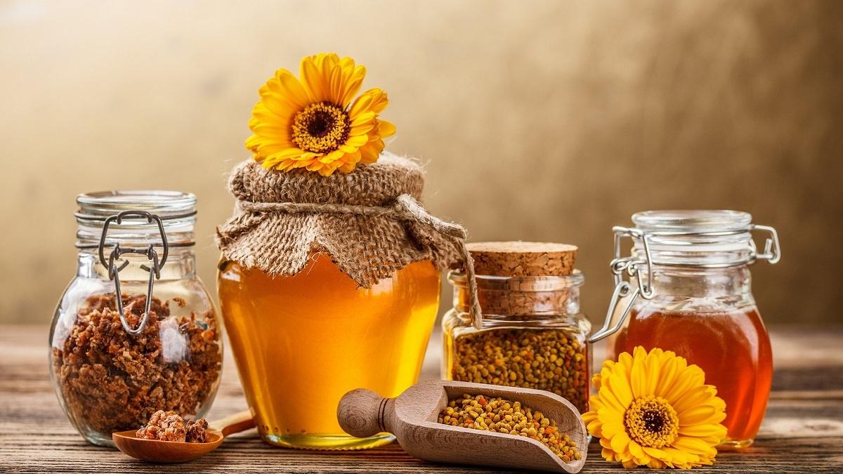 Экскурсияв музей пчеловодства в Харькове с компанией Днепр-Море
