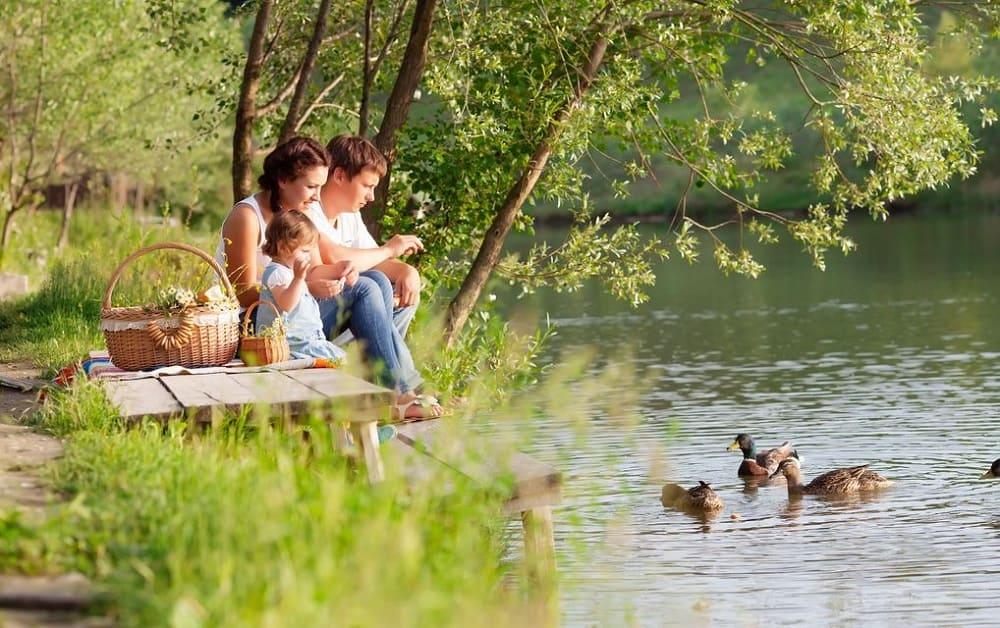 Семейный отдых на природе. Заповедник Нестеренки. Днепр-Море