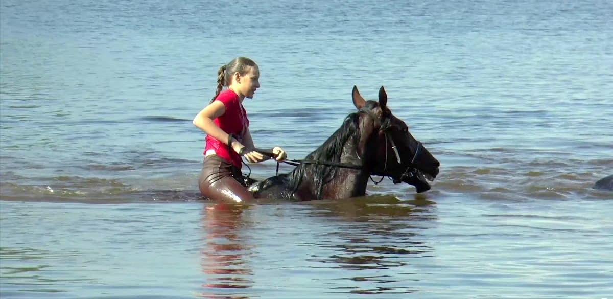Купание с лошадьми. Днепр-Море
