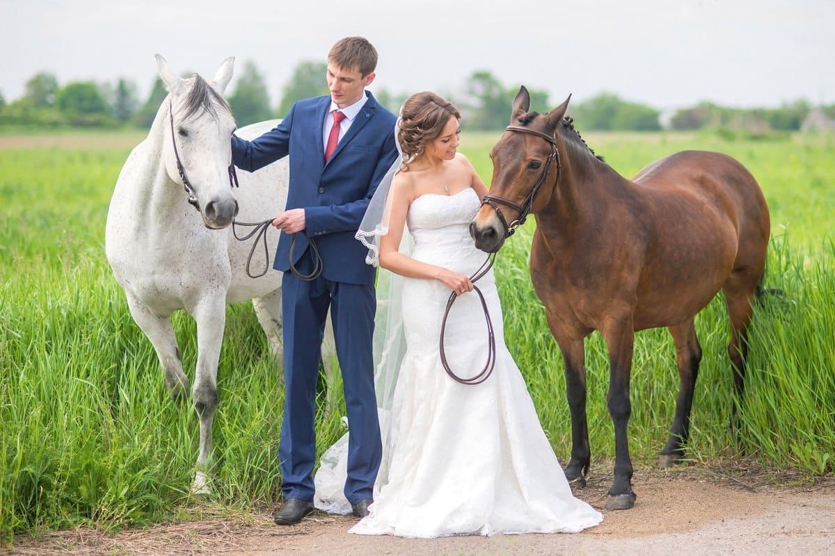 Свадебная фотосессия с лошадьми. Днепр-Море