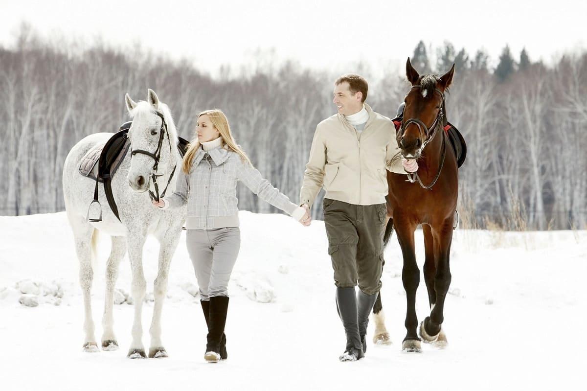 Романтические прогулки на лошадях. Днепр-Море