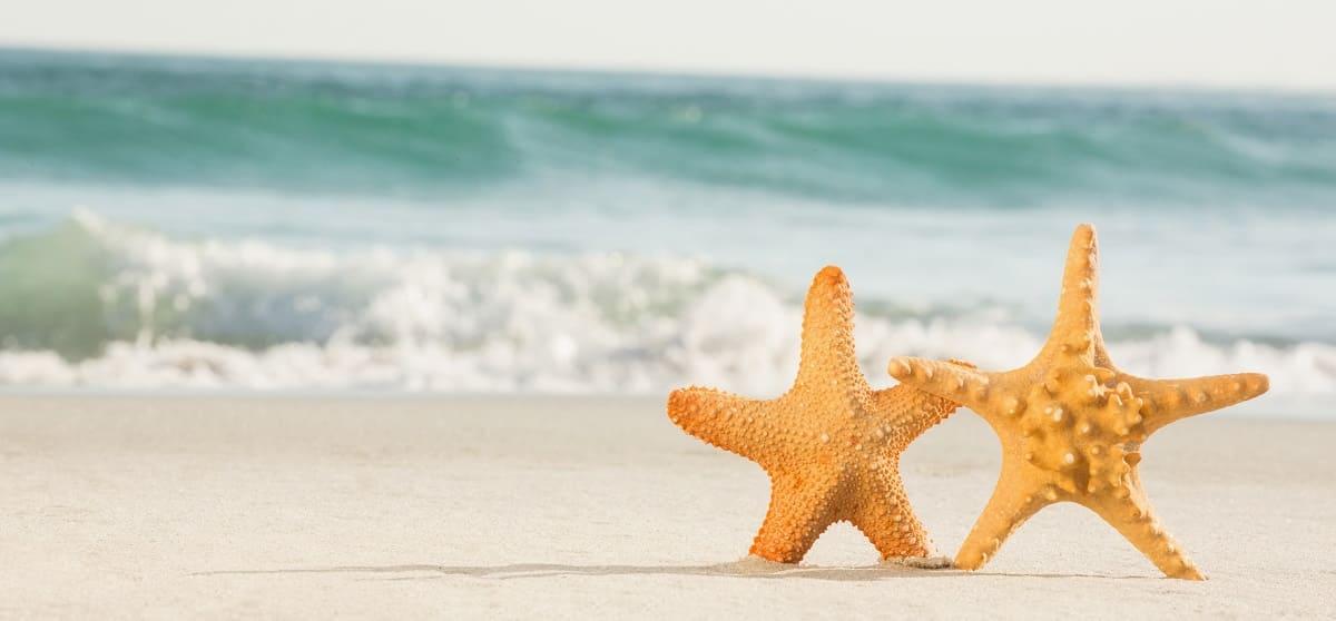 Поездки на море из Кривого-Рога. Днепр-Море
